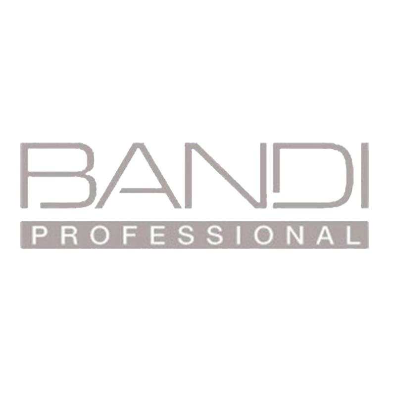 Bandi_professional_logo-e1453150990291